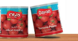 Export canned tomato paste