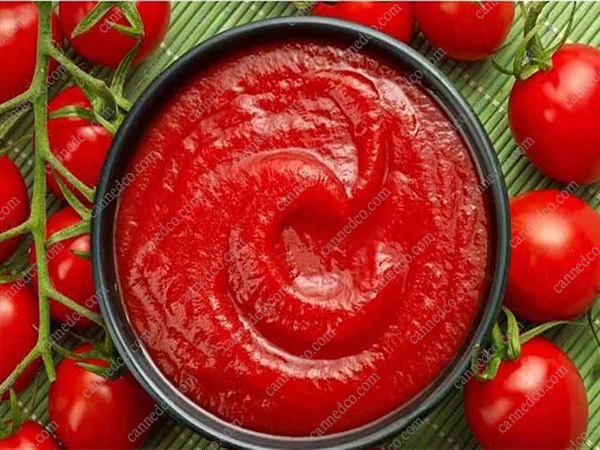 import tomato paste canned