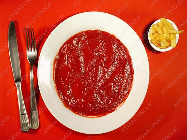 tomato paste in bulk