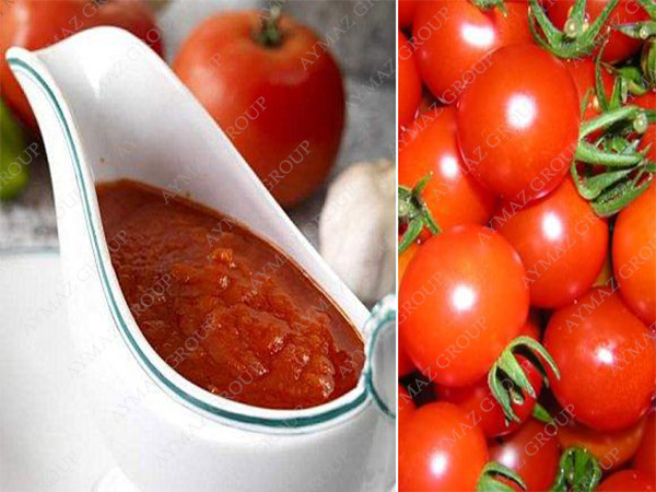 Supply canned tomato past