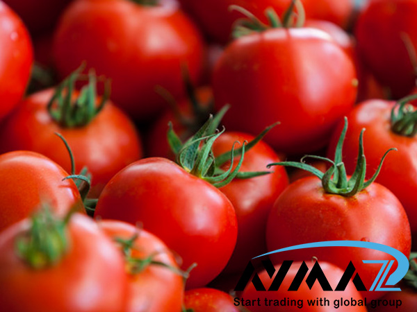Bulk Tomato Paste | Best Wholesalers & Distributors