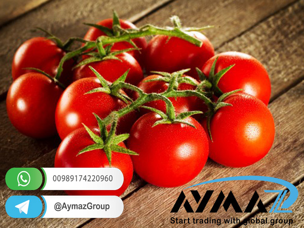 Current price of tomato paste