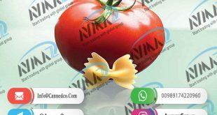 Cheap aseptic tomato paste