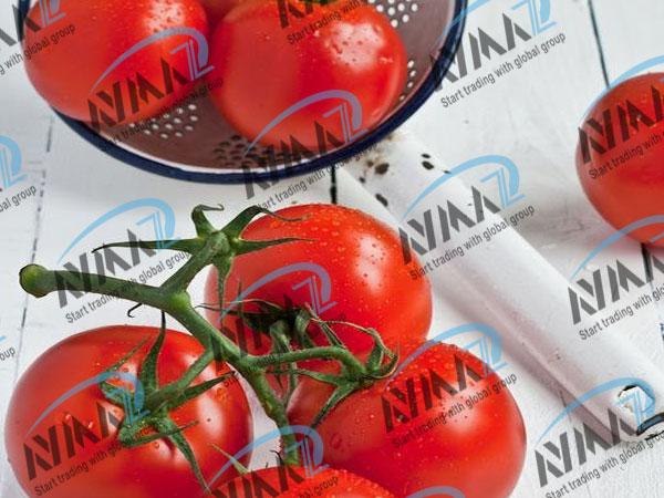 hot Break tomato paste