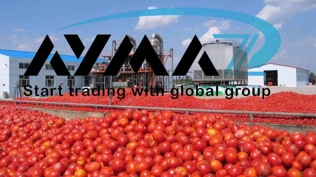 sale tomato paste Brix