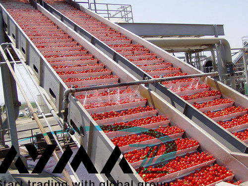 Importing aseptic tomato paste