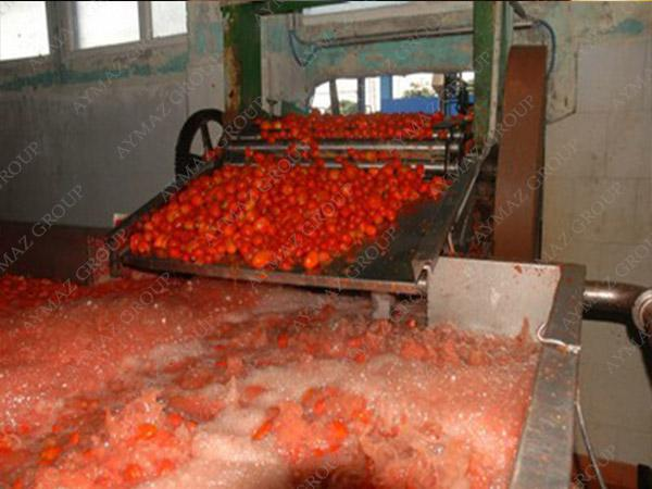 organic tomato paste in glass jar perfect for exports