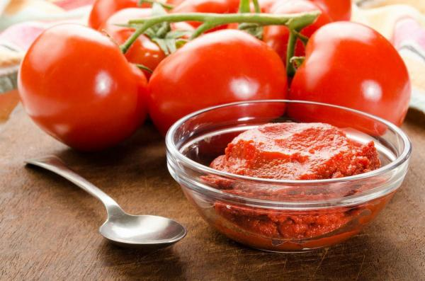 tomato paste prices in different factories